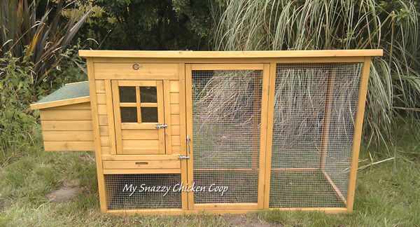 7 Reasons To Elevate Your Chicken Coop